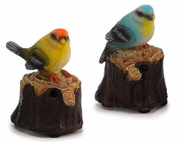 Bewegungsmelder Vogel